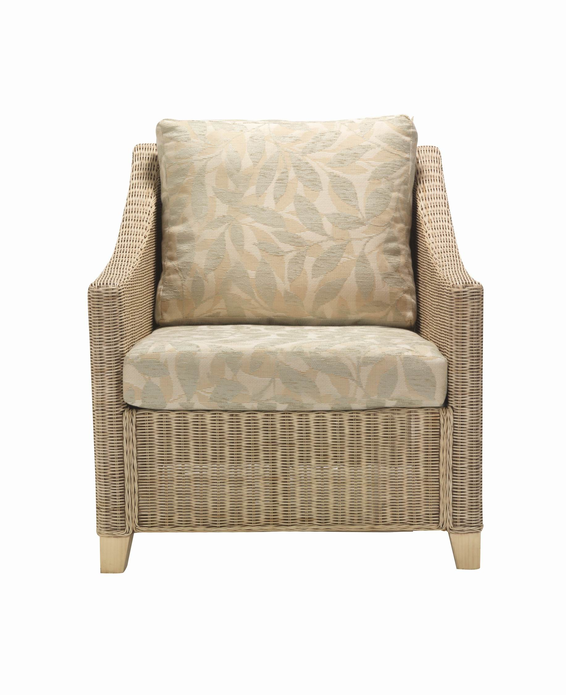 Desser Dijon Armchair and Cushion