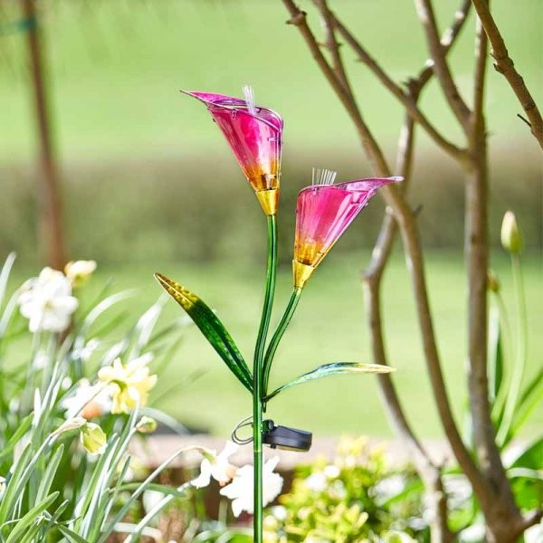 Lily Solar Flower by Smart Garden