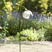 Snowdrop Solar Flower by Smart Garden