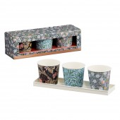 Set of 3 Herb Pots - Leicester Print